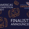 Americas Competition 2017 – Grand Jury Finalists