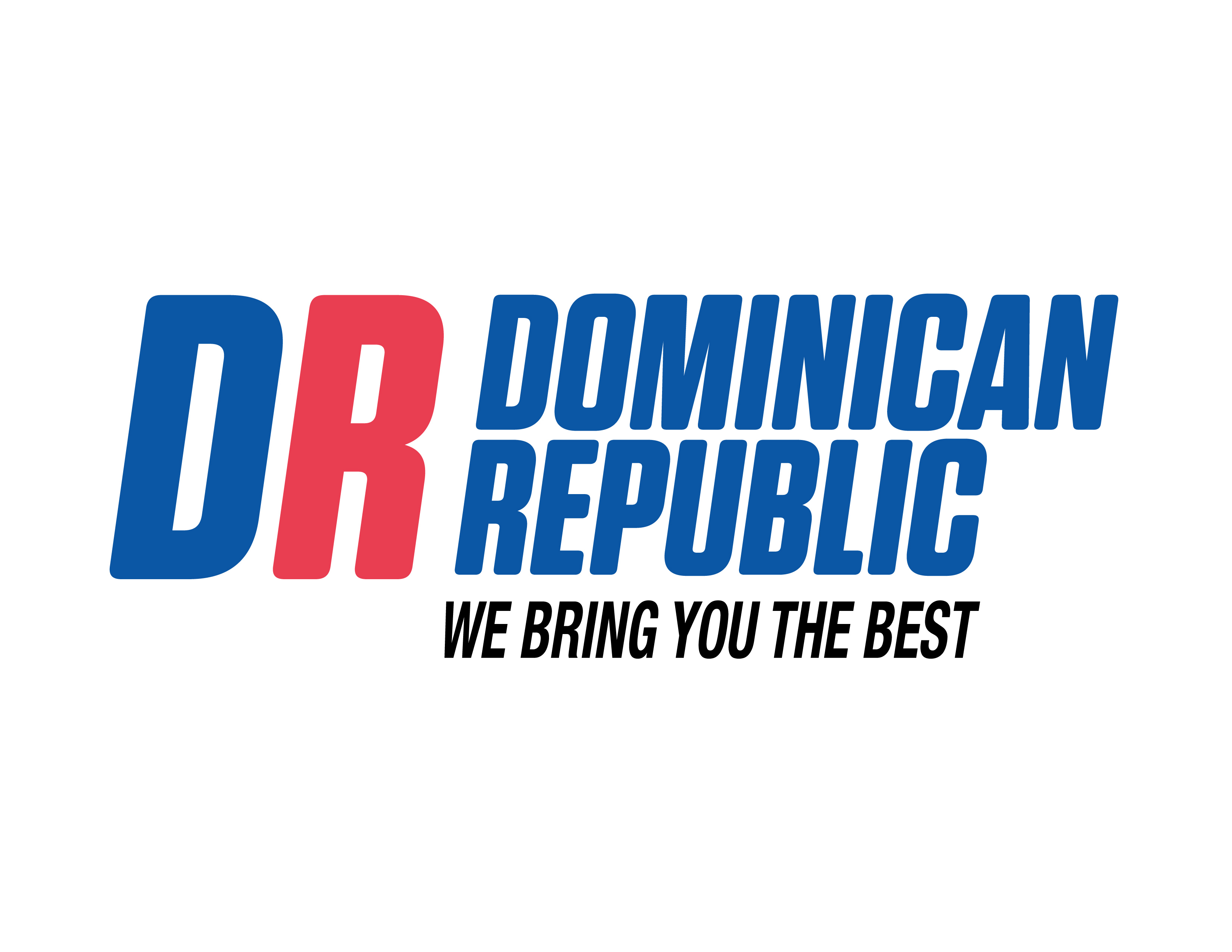 Embassy of the Dominican Republic Logo