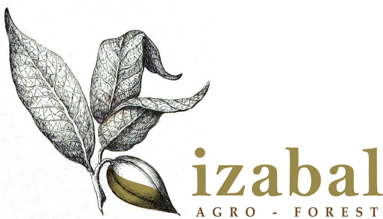 Izabal Agro forest logo
